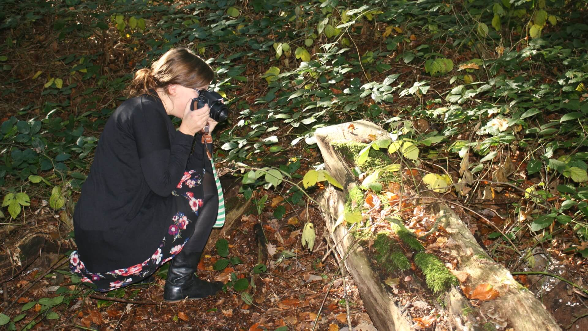 Lijn 10, Marjolijn Fotografie zuidhorn, fotograaf zuidhorn, fotografie, Marjolein