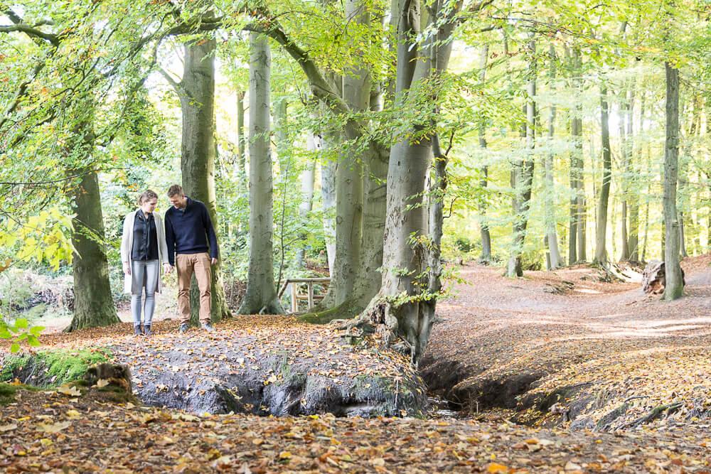 Lijn 10, Pre wedding shoot , trouwen, love shoot bos, Zuidhorn Fotograaf Regio Groningen,